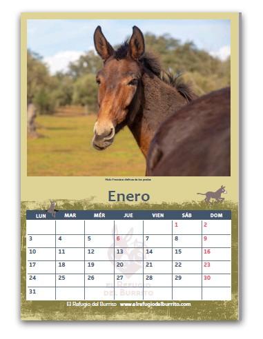 Calendario 2022