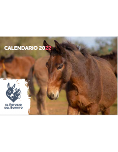 Calendario solidario 2022...