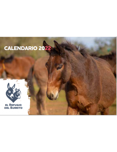 Calendario solidario 2022 sobremesa